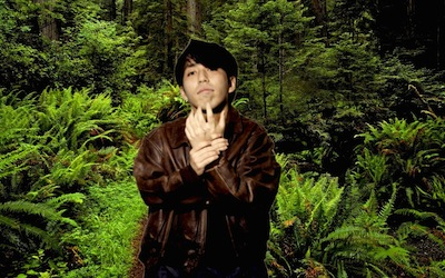 forest%20gori%202.jpg