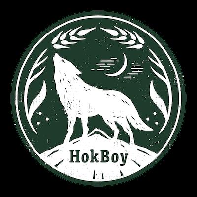 matrix_hokboy_logo.png